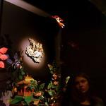 Экспозиция Чистая земля Будды Амитабхи, Музей истории религии