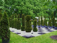 Первый Международный фестиваль Императорские Сады России