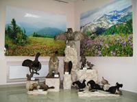 Выставка Природа Кемеровской области