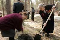 Дни древонасаждений в музее-заповеднике Томская Писаница