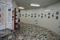 Зал временных выставок и экспозиций