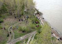 С. Башлычев. Панорама