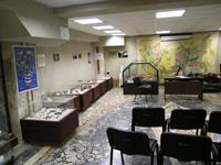 Вид экспозиции