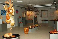 Выставка Ю. Зырянова Поэзия дерева