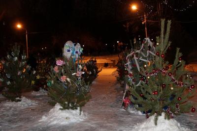 Значимые места: Резиденция Деда Мороза и новогодняя акция «Елочный парад»