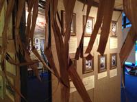 Фрагмент экспозиции, посвящённой выдающимся путешественникам
