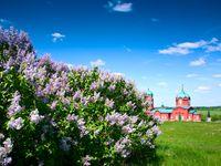 Международный день музеев и Куликово поле
