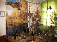 Экспозиция Природа Присвирья