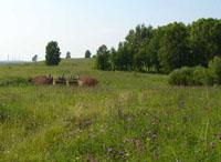 Значимые места: Площадка городища Иднакар и раскопки внешнего вала. Вид с востока.. Археологическая экспедиция Иднакар