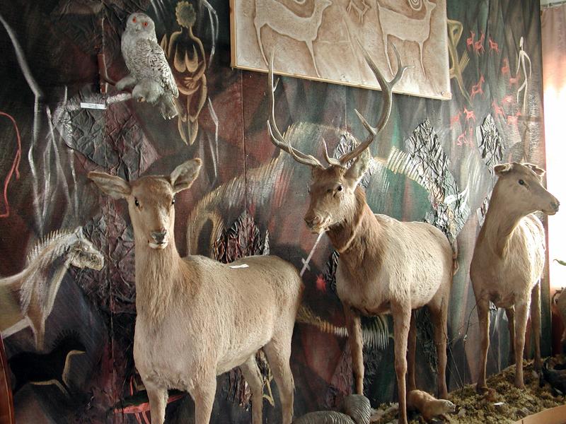 Значимые места: Экспозиция в отделе Музей Чуйского тракта