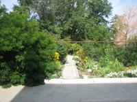 Ботанический сад отдела природы