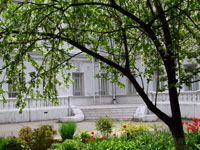 В музейном саду