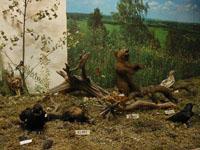 Фрагмент природно-этнографической экспозиции Лад