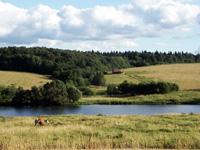 Вид на пруд