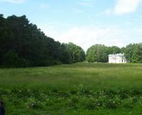 В парке Елагиноостровского дворца