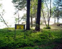 Вид с севера поселения Черная речка VIII и щит с надписью Место остановки туристов