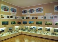 Фрагмент экспозиции отдела природы