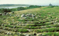 Лабиринт Заяцкого острова ( I - II тыс. лет до н. э.)
