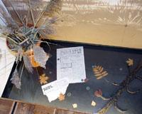 Музей Мологского края. Фрагмент экспозиции. Фото А.Лебедева